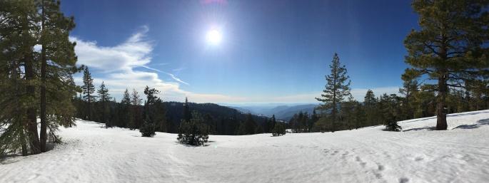 YosemiteDeweyPointIMG_3849